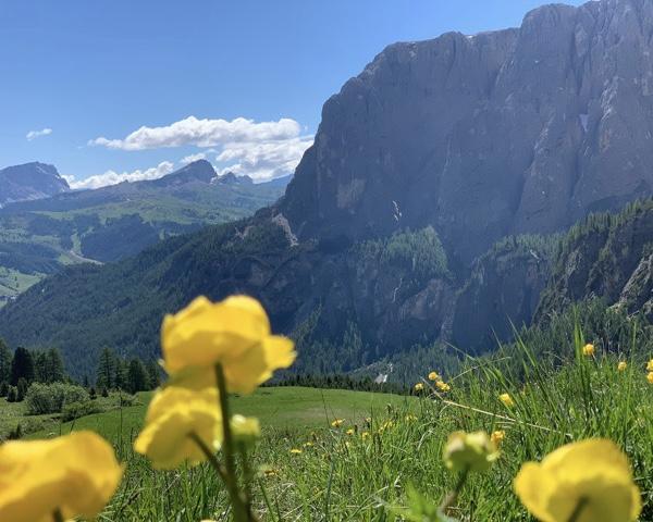 Capa Dolomitas italianas